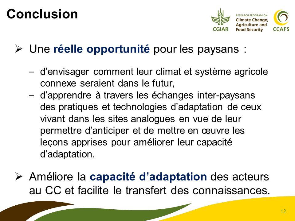 Conclusion Une réelle opportunité pour les paysans :