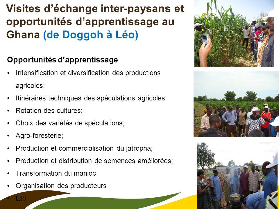 Visites d'échange inter-paysans et opportunités d'apprentissage au Ghana (de Doggoh à Léo)
