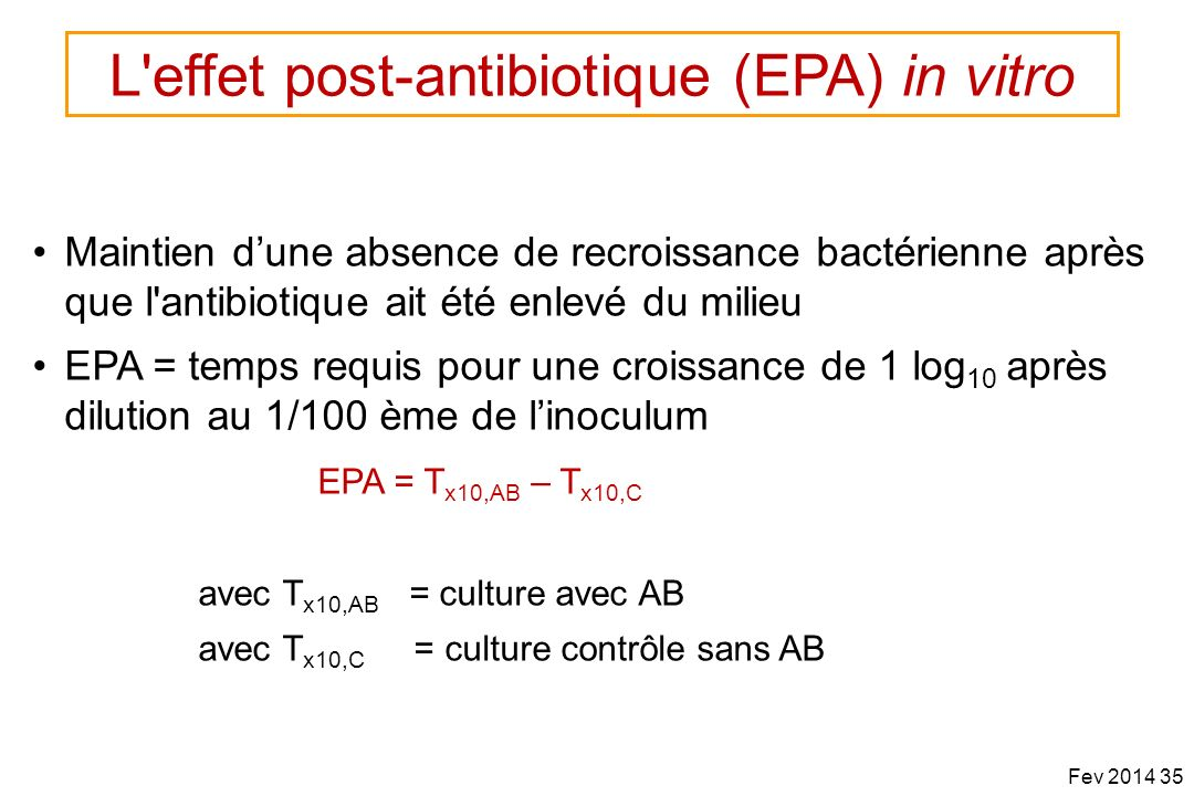 L effet post-antibiotique (EPA) in vitro