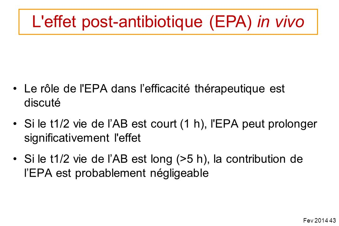 L effet post-antibiotique (EPA) in vivo