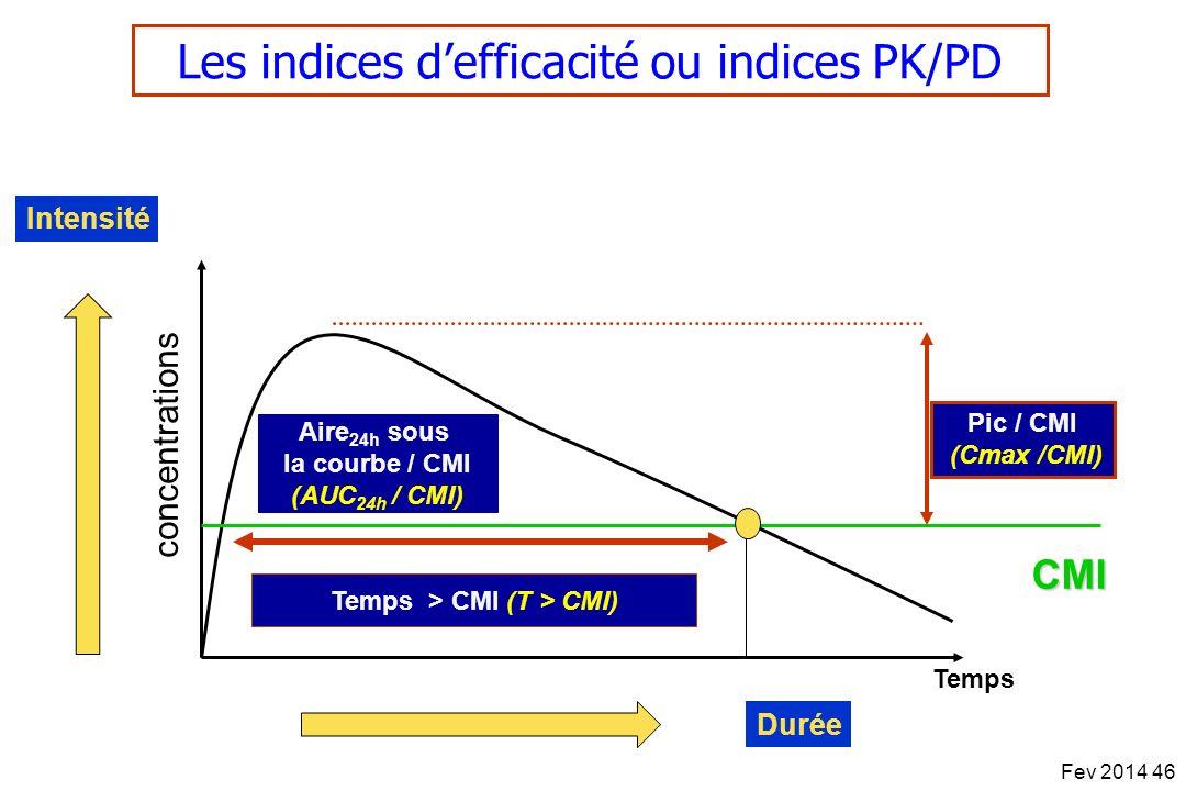 Aire24h sous la courbe / CMI (AUC24h / CMI)