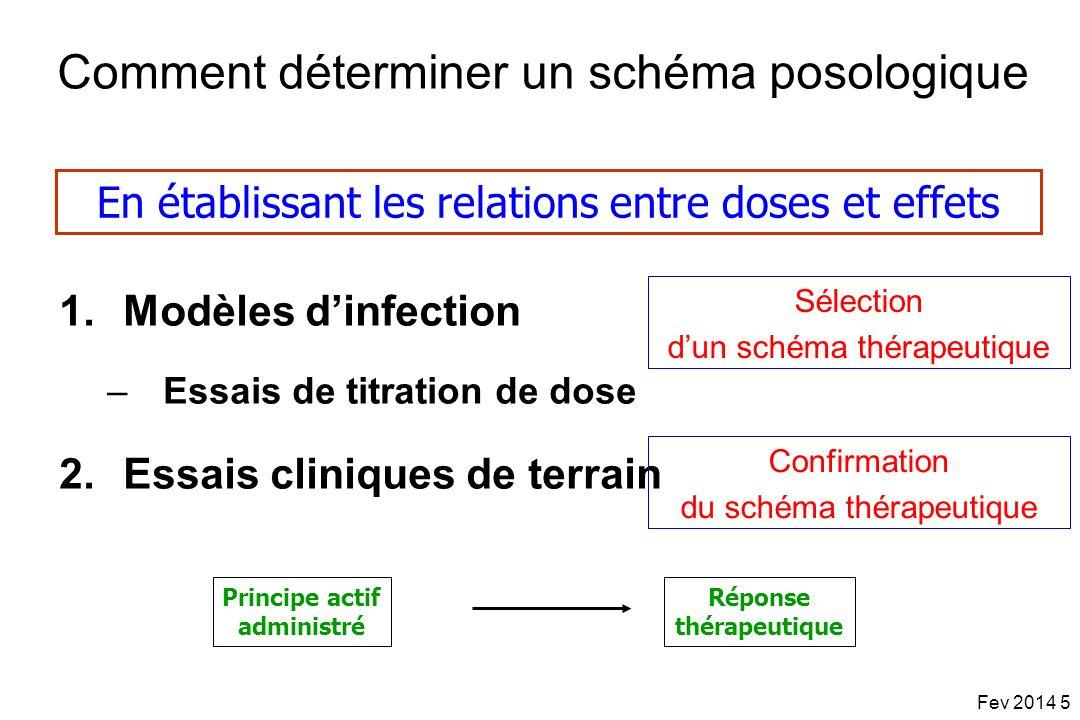 Comment déterminer un schéma posologique
