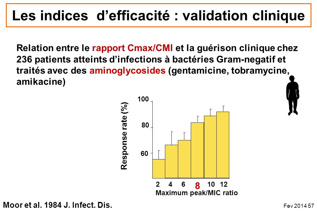 Les indices d'efficacité : validation clinique