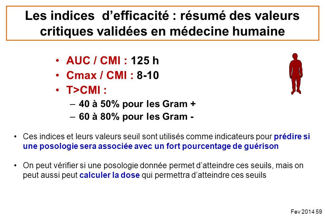 Les indices d'efficacité : résumé des valeurs critiques validées en médecine humaine
