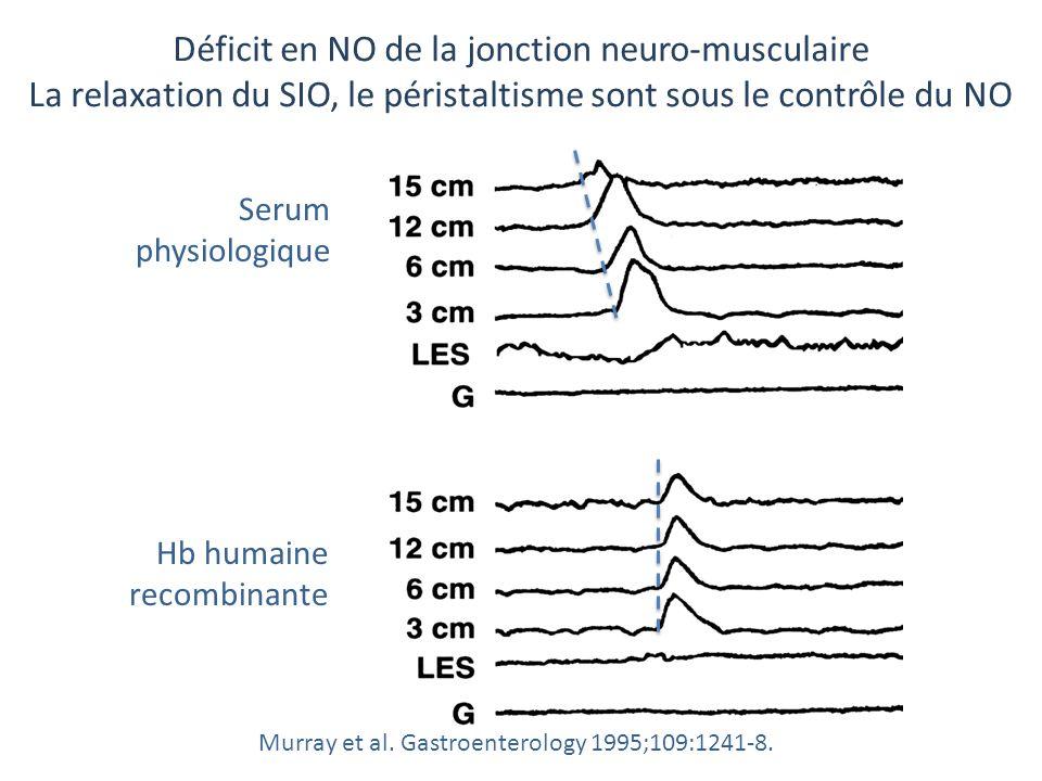 Déficit en NO de la jonction neuro-musculaire