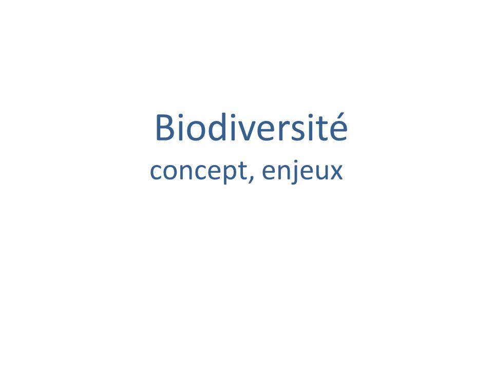 Biodiversité concept, enjeux
