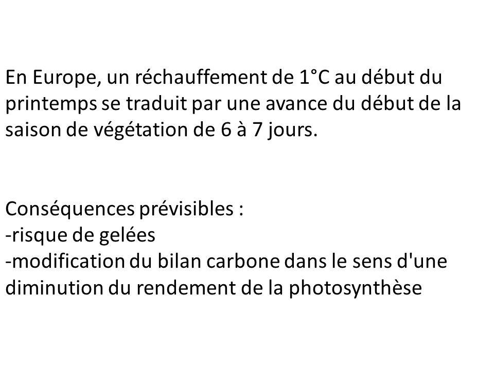 En Europe, un réchauffement de 1°C au début du printemps se traduit par une avance du début de la saison de végétation de 6 à 7 jours.