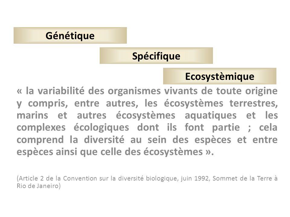 Génétique Spécifique Ecosystèmique