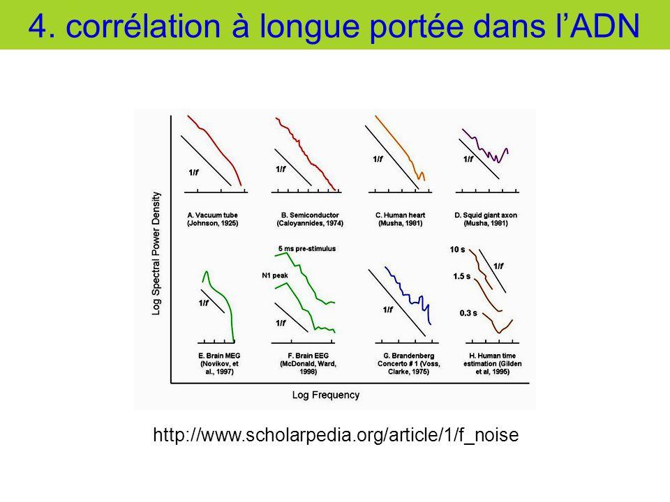 4. corrélation à longue portée dans l'ADN