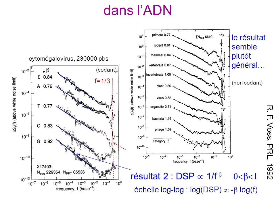 dans l'ADN résultat 1 : pic à f = 1/3