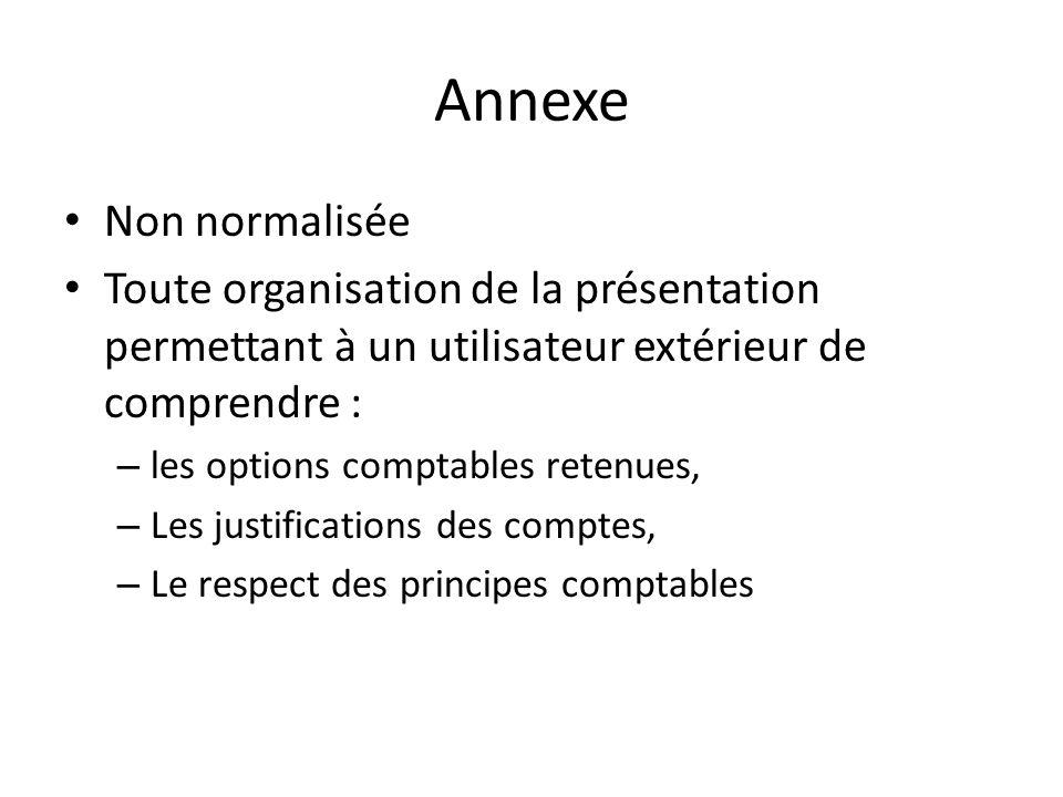 Annexe Non normalisée. Toute organisation de la présentation permettant à un utilisateur extérieur de comprendre :
