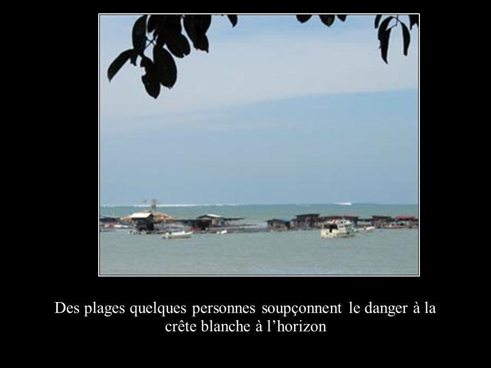 Des plages quelques personnes soupçonnent le danger à la crête blanche à l'horizon