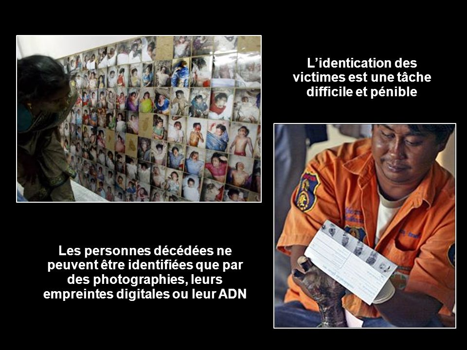 L'identication des victimes est une tâche difficile et pénible
