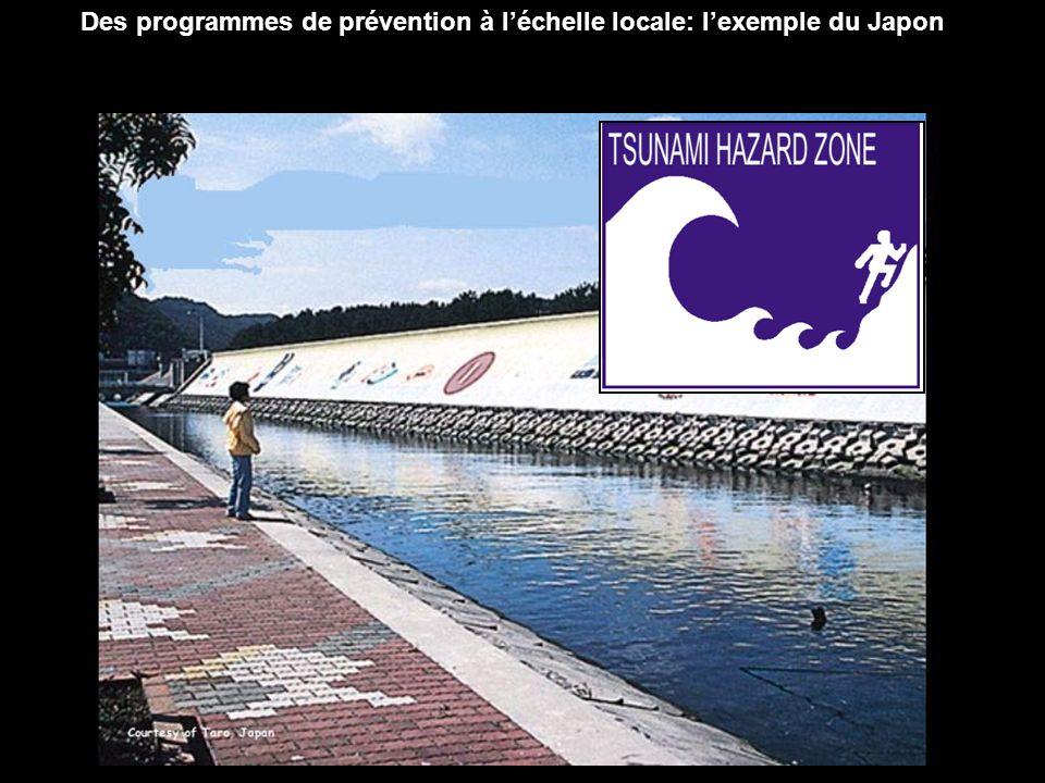 Des programmes de prévention à l'échelle locale: l'exemple du Japon