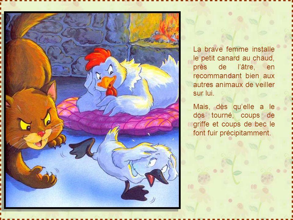 La brave femme installe le petit canard au chaud, près de l'âtre, en recommandant bien aux autres animaux de veiller sur lui.