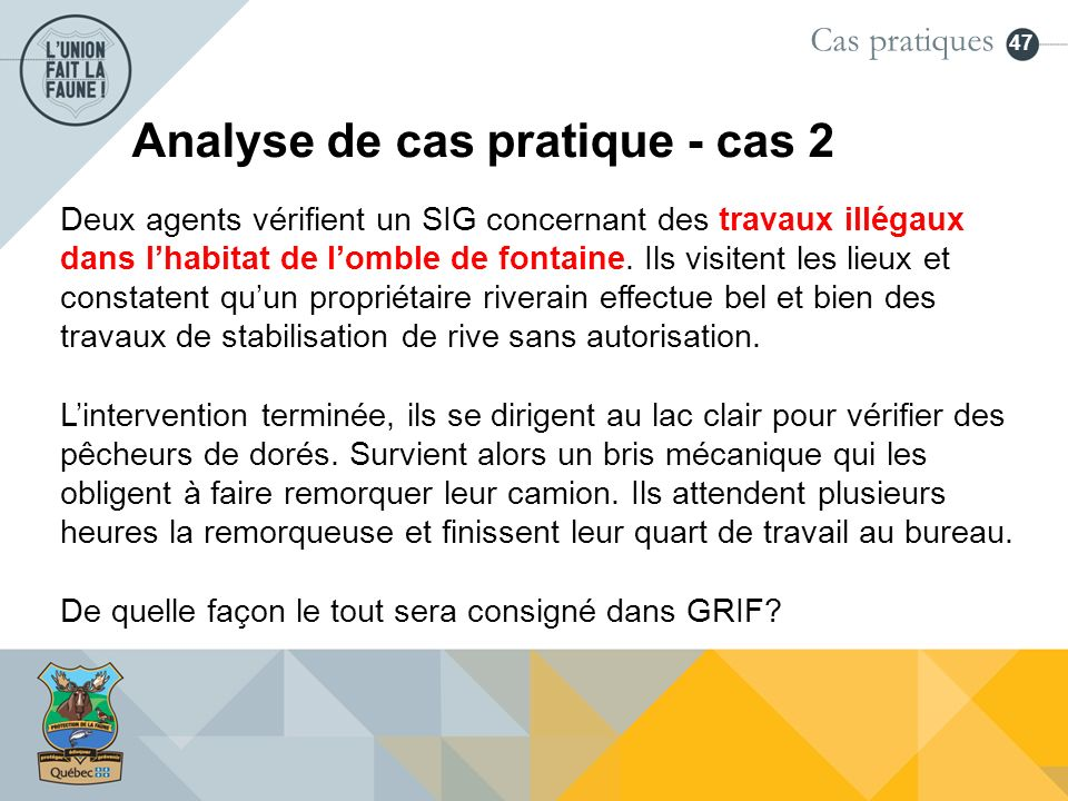 Analyse de cas pratique - cas 2