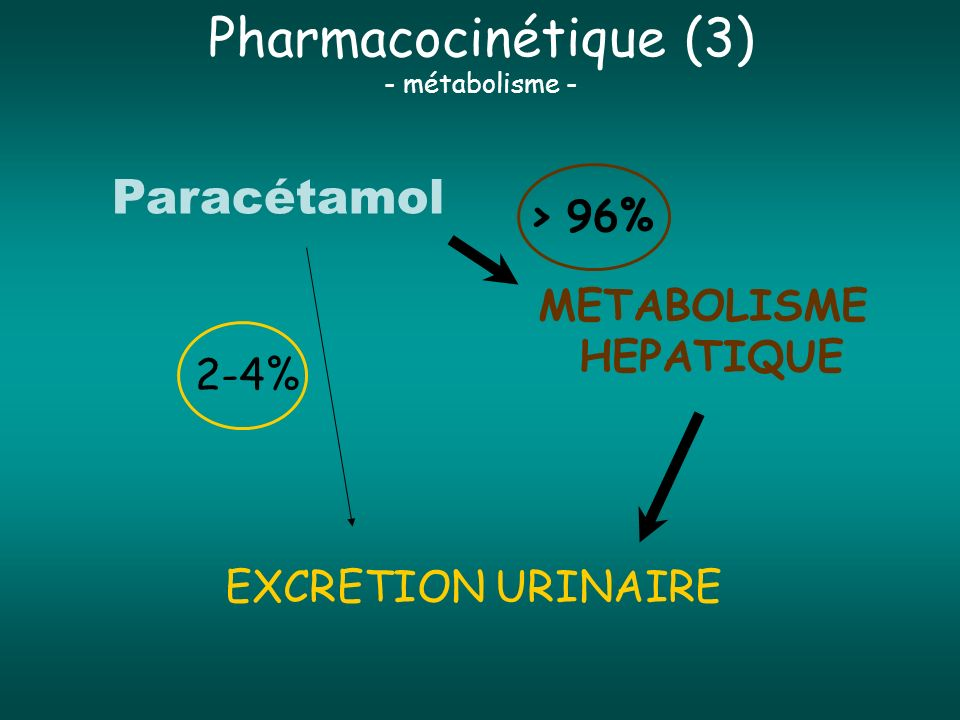 Pharmacocinétique (3) Paracétamol > 96% METABOLISME HEPATIQUE 2-4%