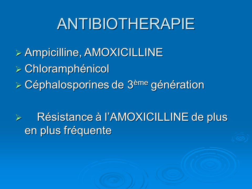 ANTIBIOTHERAPIE Ampicilline, AMOXICILLINE Chloramphénicol