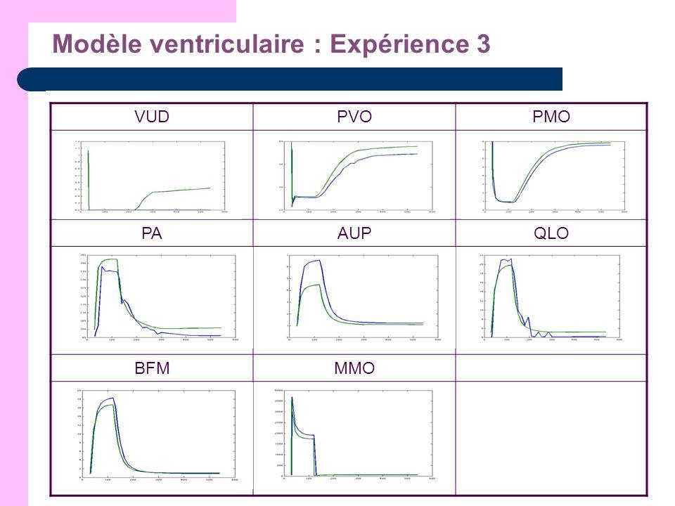 Modèle ventriculaire : Expérience 3