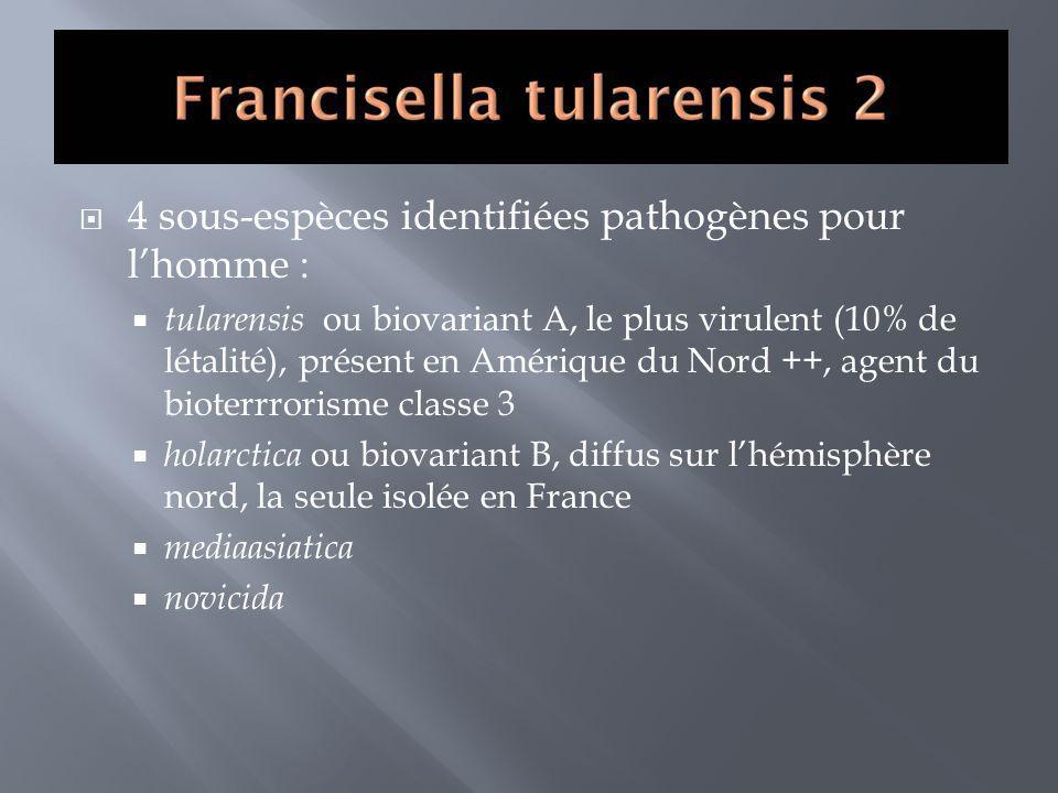 4 sous-espèces identifiées pathogènes pour l'homme :