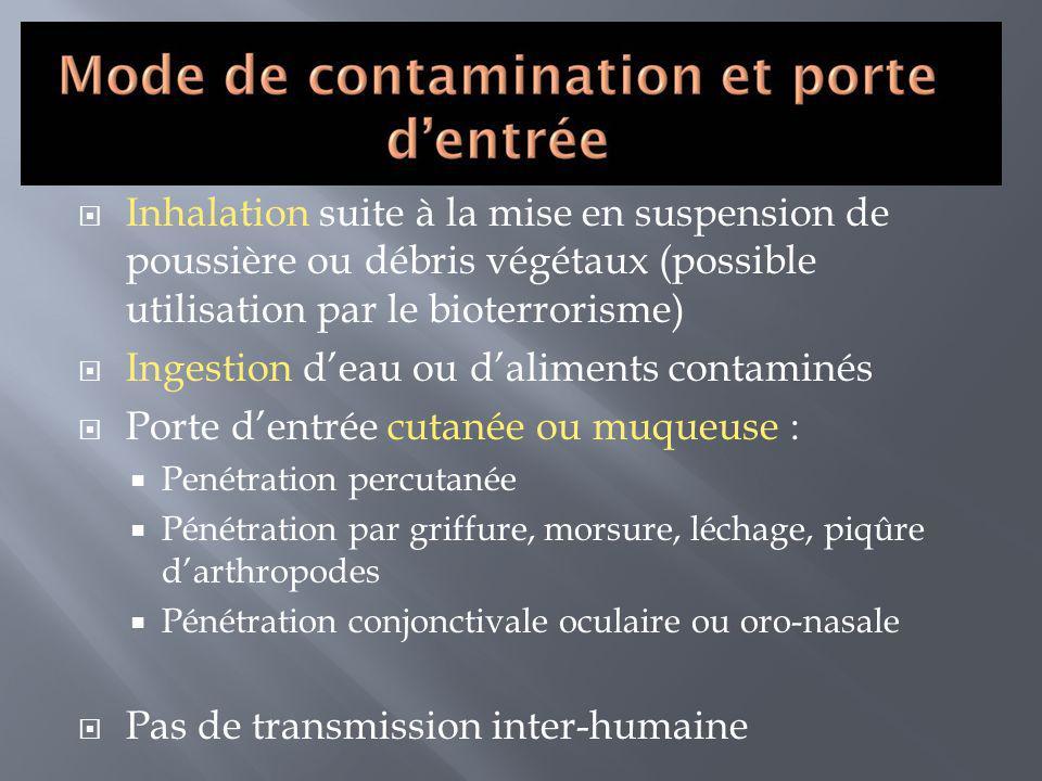 Ingestion d'eau ou d'aliments contaminés