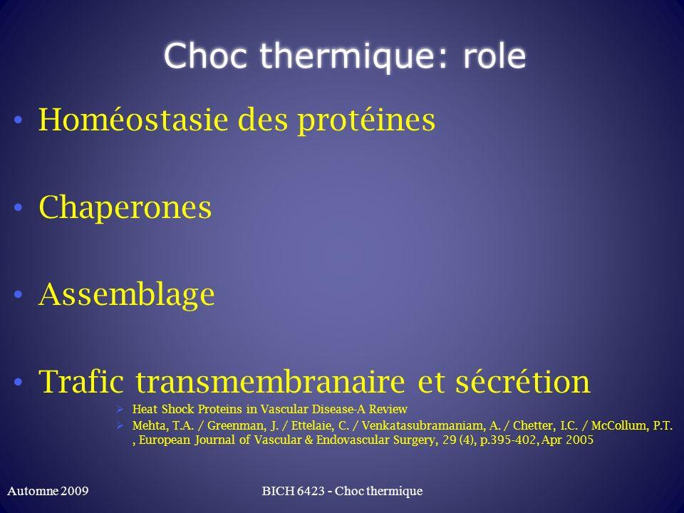 Choc thermique: role Homéostasie des protéines Chaperones Assemblage