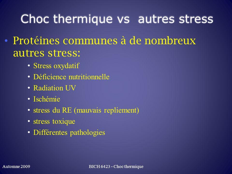 Choc thermique vs autres stress