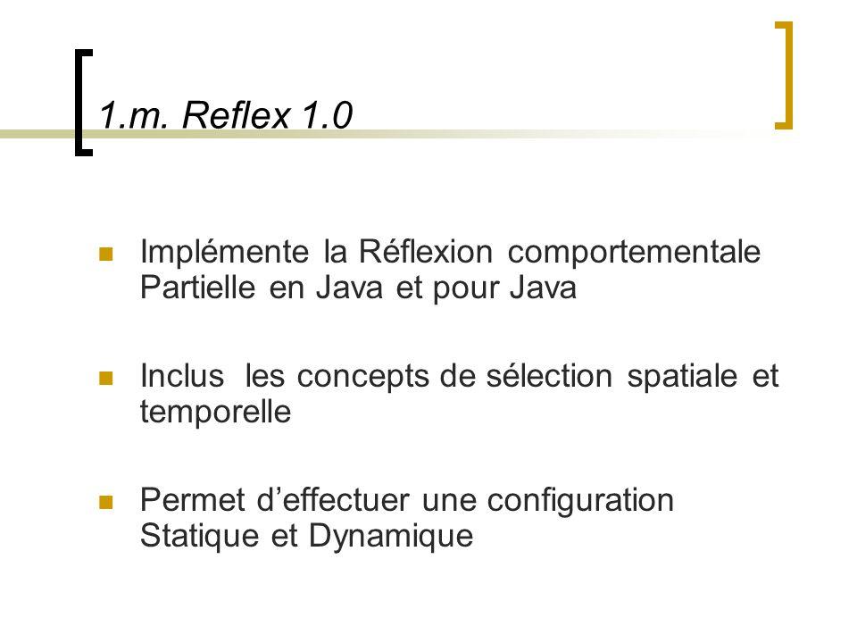1.m. Reflex 1.0 Implémente la Réflexion comportementale Partielle en Java et pour Java. Inclus les concepts de sélection spatiale et temporelle.