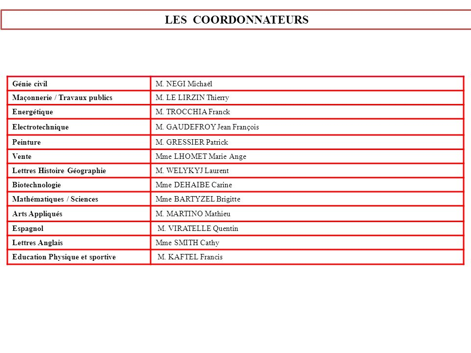 LES COORDONNATEURS Génie civil M. NEGI Michaël