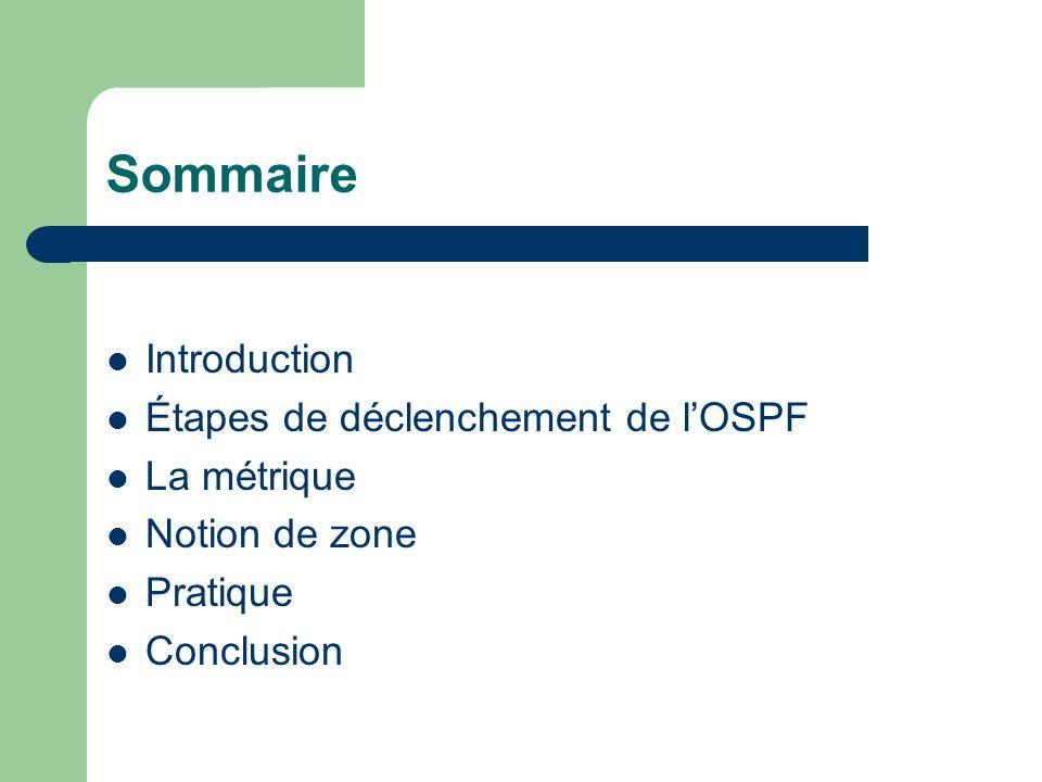Sommaire Introduction Étapes de déclenchement de l'OSPF La métrique