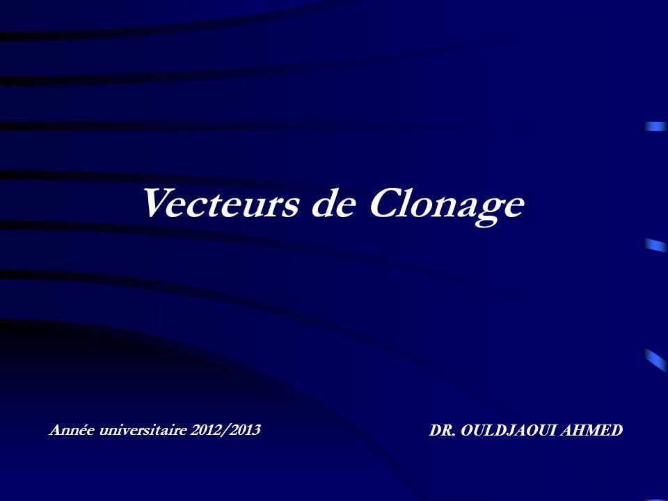 Vecteurs de Clonage Année universitaire 2012/2013 DR. OULDJAOUI AHMED