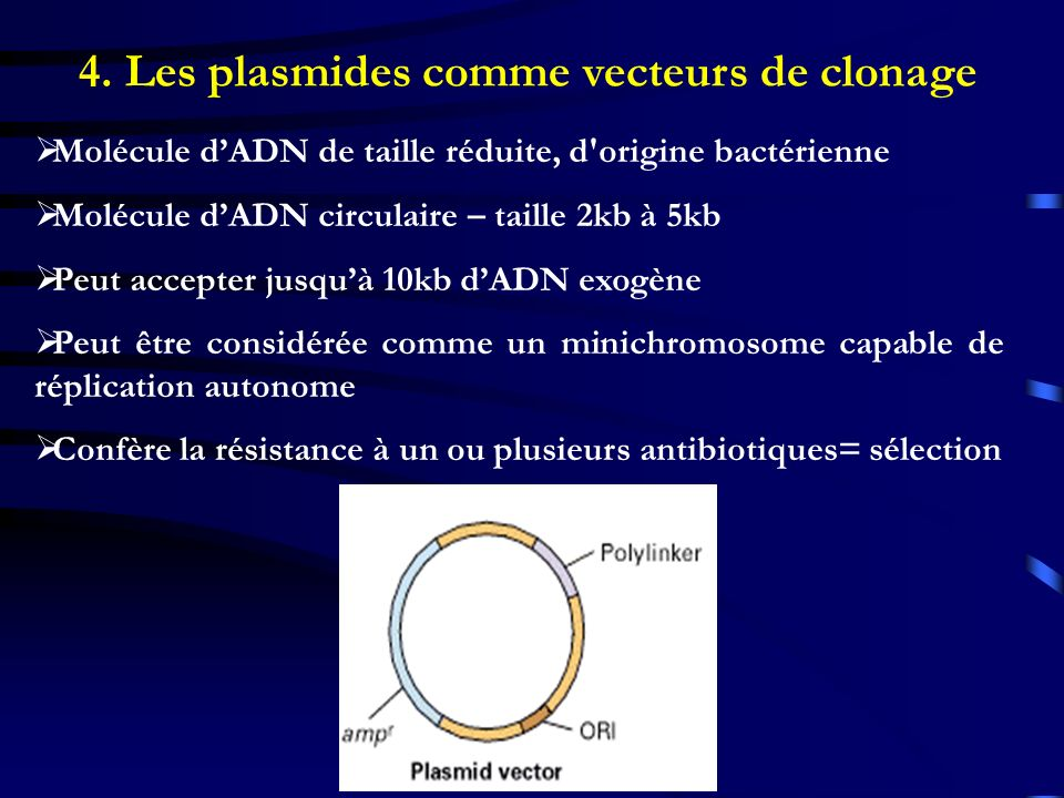 4. Les plasmides comme vecteurs de clonage