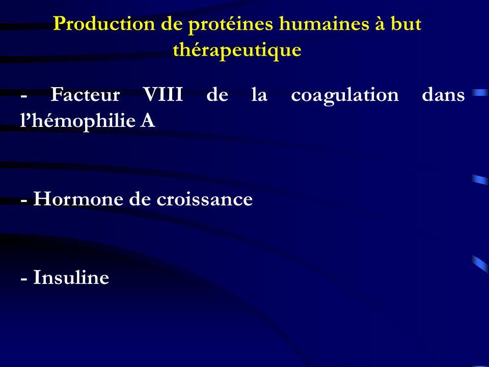 Production de protéines humaines à but thérapeutique