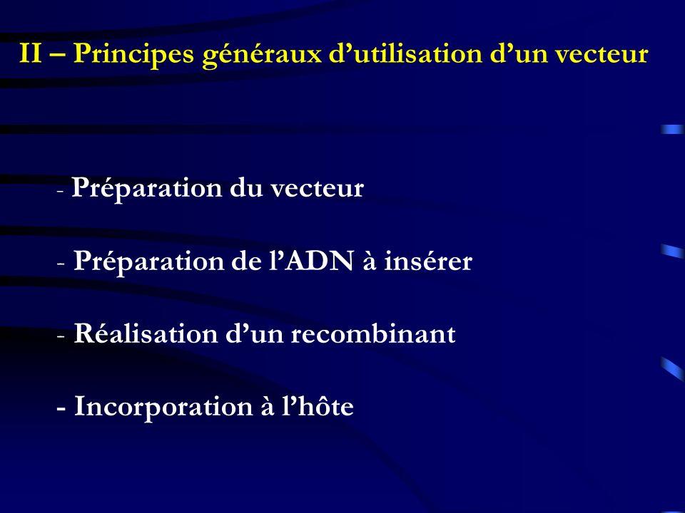 II – Principes généraux d'utilisation d'un vecteur