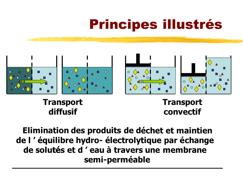 Principes illustrés Transport Transport diffusif convectif