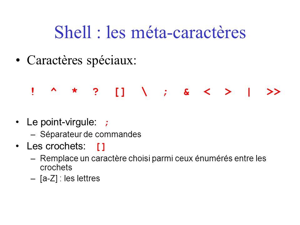 Shell : les méta-caractères