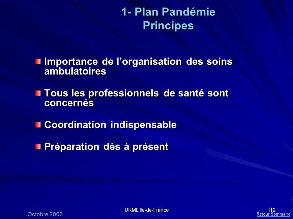 1- Plan Pandémie Principes