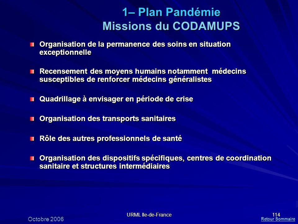 1– Plan Pandémie Missions du CODAMUPS