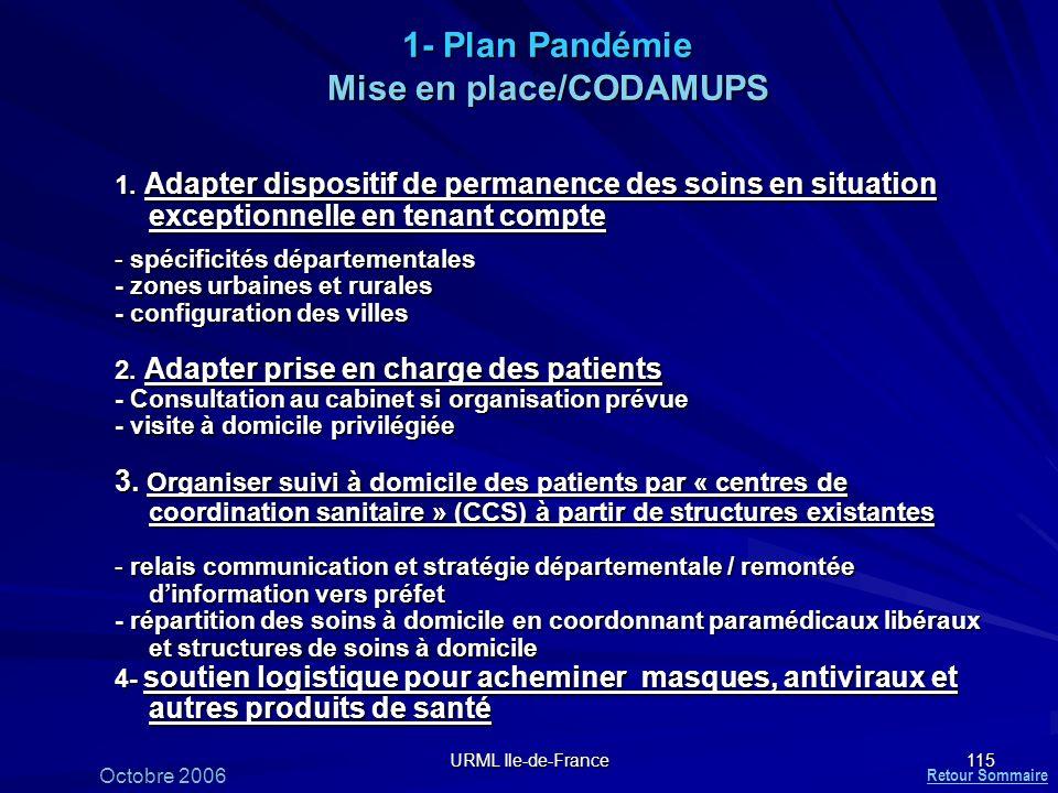 1- Plan Pandémie Mise en place/CODAMUPS