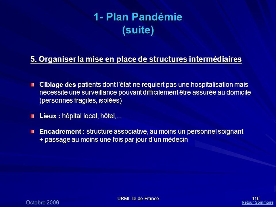 1- Plan Pandémie (suite)