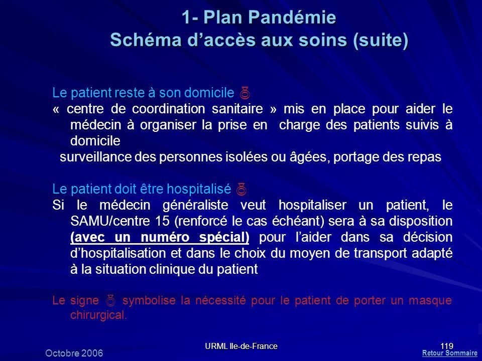 1- Plan Pandémie Schéma d'accès aux soins (suite)