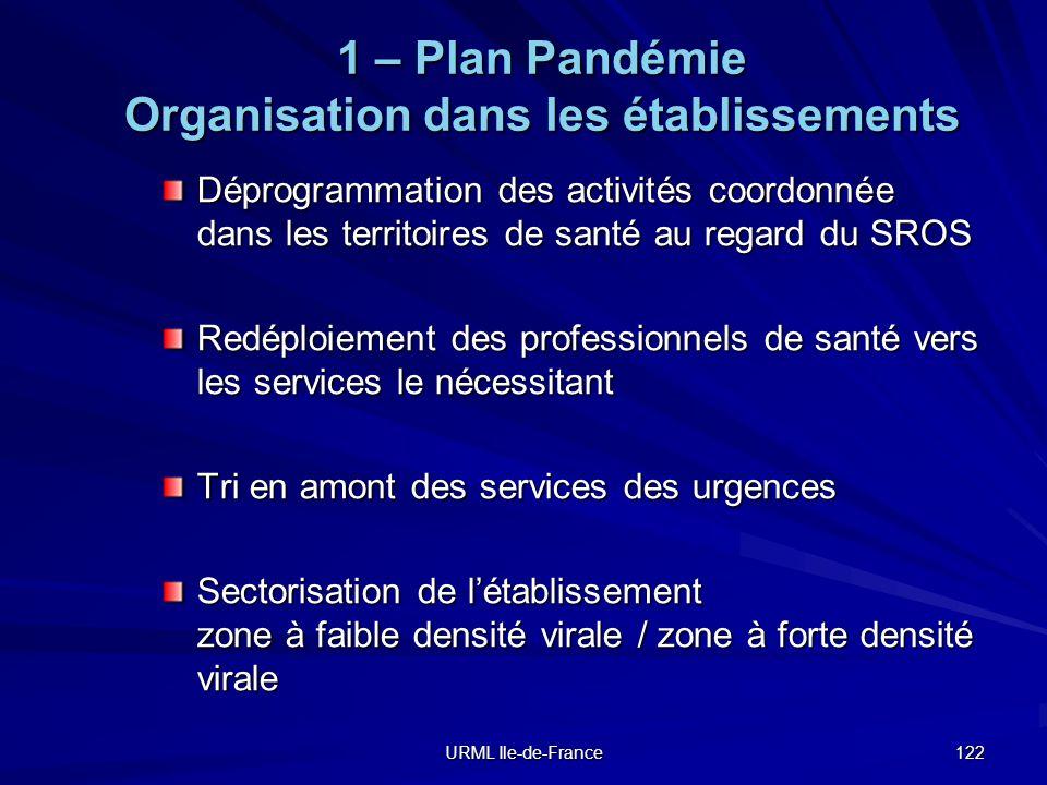 1 – Plan Pandémie Organisation dans les établissements