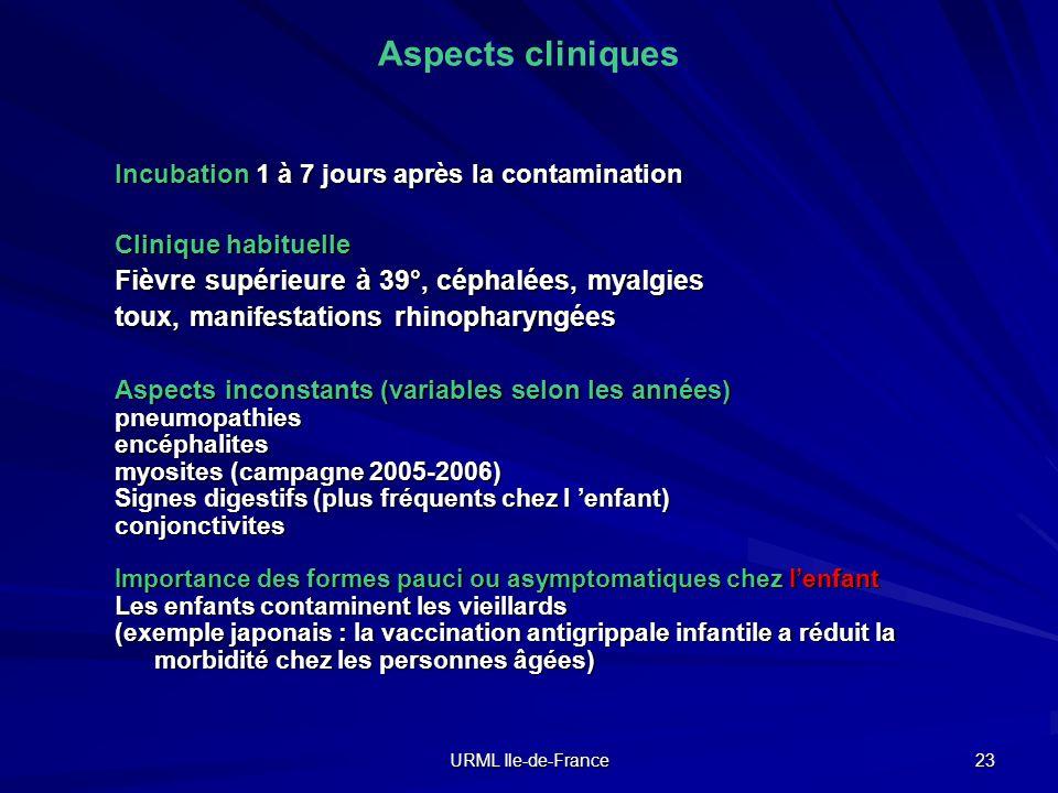 Aspects cliniques Fièvre supérieure à 39°, céphalées, myalgies