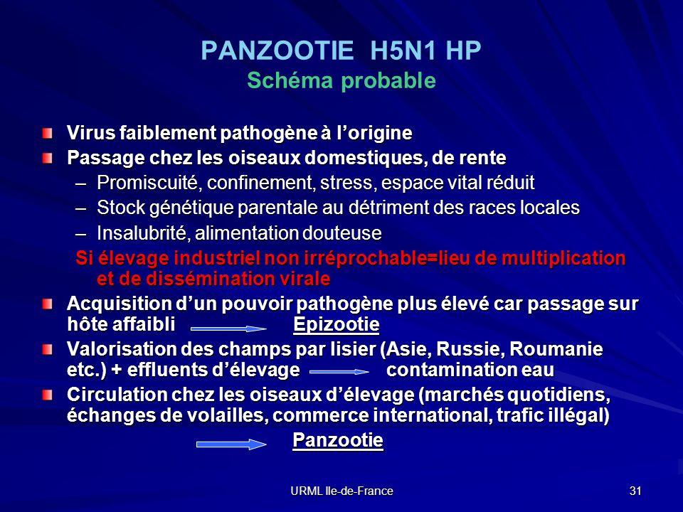 PANZOOTIE H5N1 HP Schéma probable