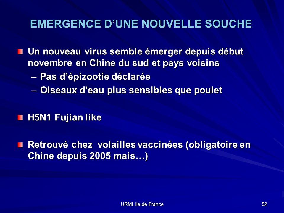 EMERGENCE D'UNE NOUVELLE SOUCHE