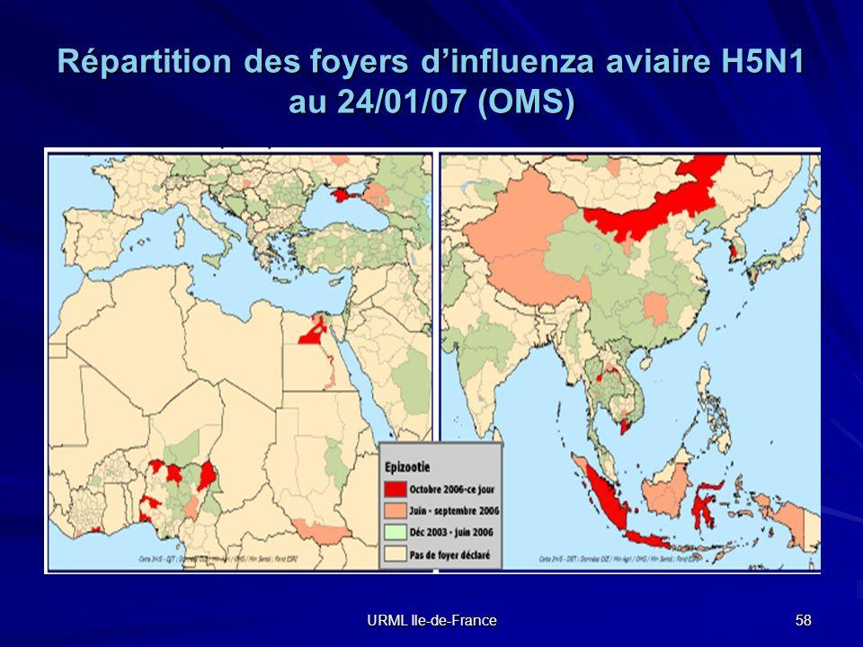 Répartition des foyers d'influenza aviaire H5N1 au 24/01/07 (OMS)