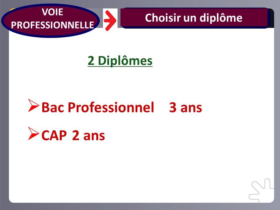 Bac Professionnel 3 ans CAP 2 ans 2 Diplômes Choisir un diplôme VOIE