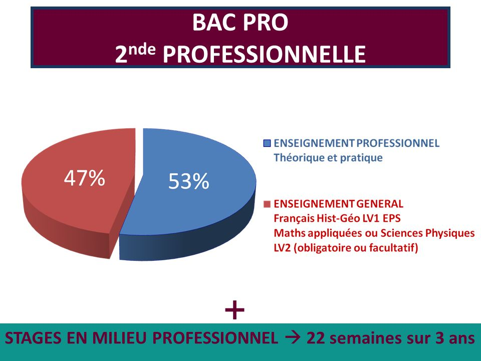 + BAC PRO 2nde PROFESSIONNELLE