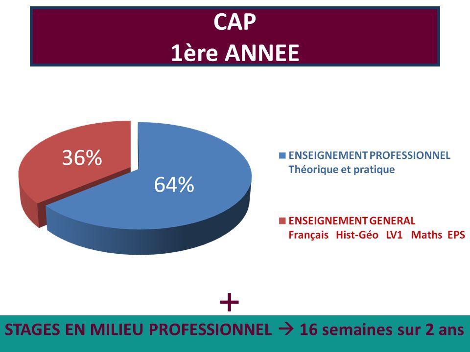 CAP 1ère ANNEE + STAGES EN MILIEU PROFESSIONNEL  16 semaines sur 2 ans