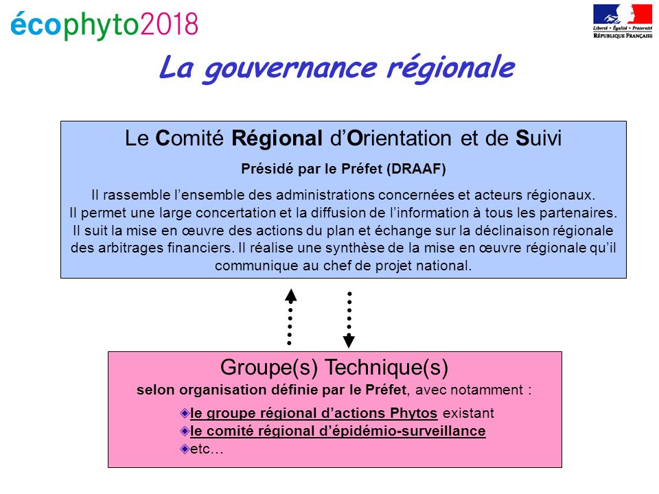 La gouvernance régionale